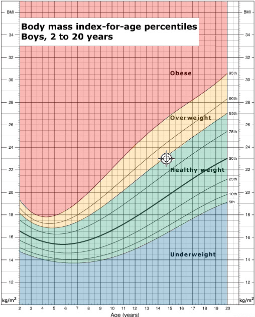 Average Weight for Women: By Age, Height, and More. Average height for a 10 year  old boy: ...